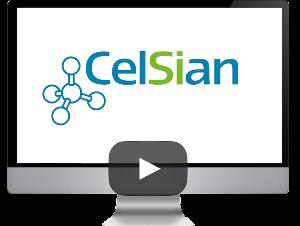 CelSian Glass & Solar BV