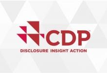 Carbon disclosure project recognition